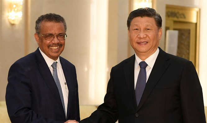 Tedros Adhanom shakes hands with China President Xi Jinping